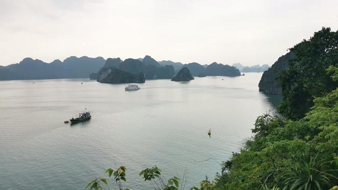 Khám phá hòn đảo thiên đường trên vịnh Hạ Long - ảnh 11