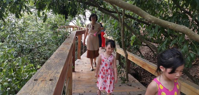 Khám phá hòn đảo thiên đường trên vịnh Hạ Long - ảnh 7