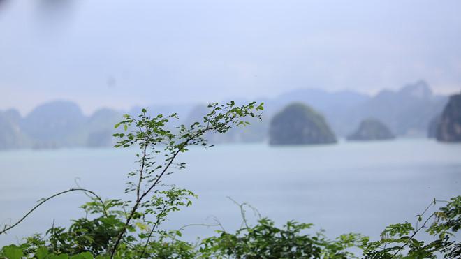 Khám phá hòn đảo thiên đường trên vịnh Hạ Long - ảnh 9