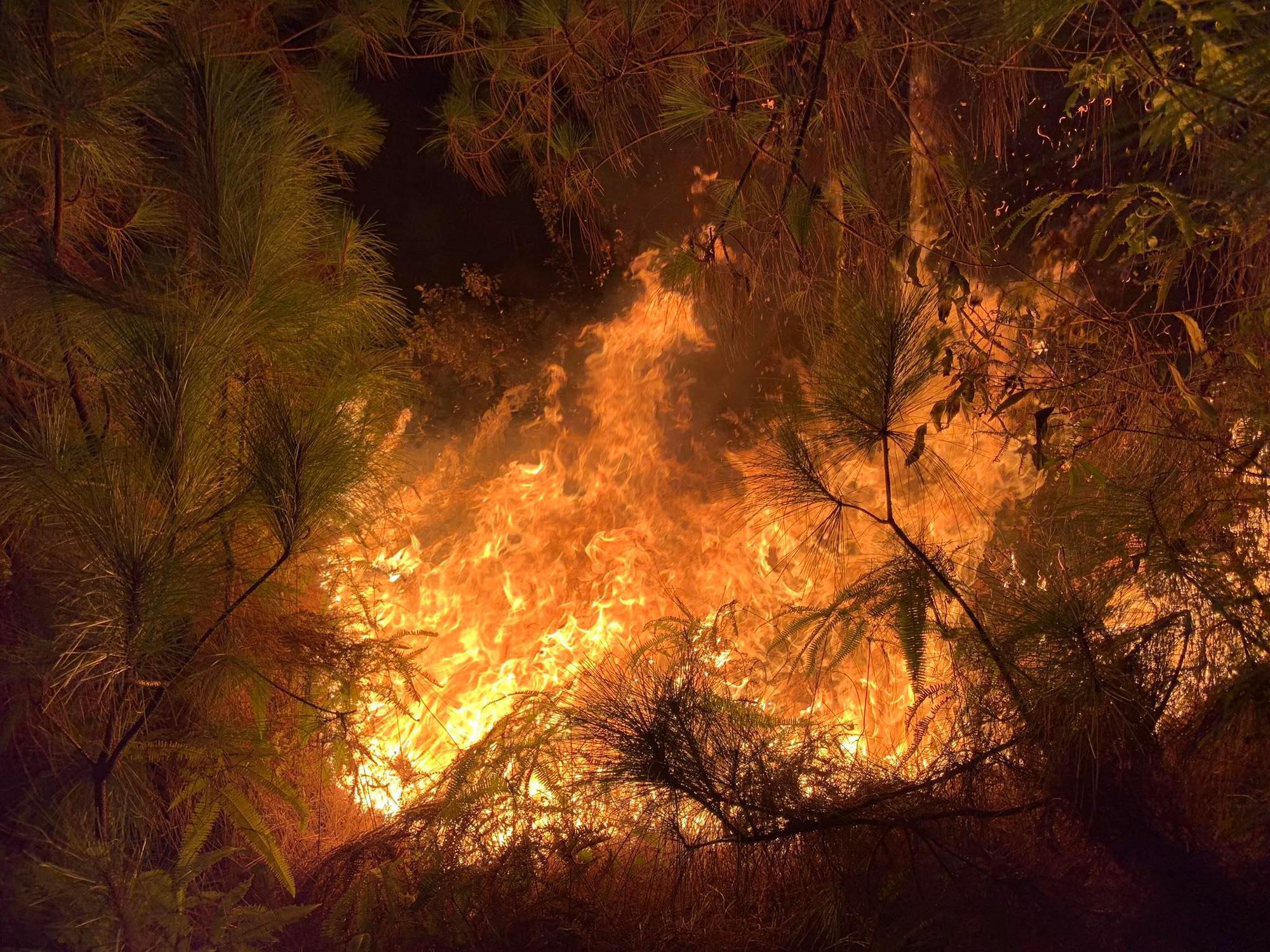 Rừng ở Hà Tĩnh, Nghệ An đang cháy đỏ trời trong đêm - Ảnh 2.