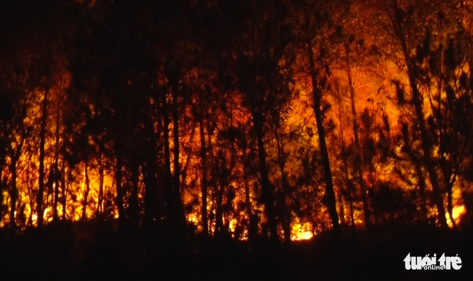 Cận cảnh xuyên đêm chiến đấu 'giặc lửa' cứu rừng - Ảnh 2.