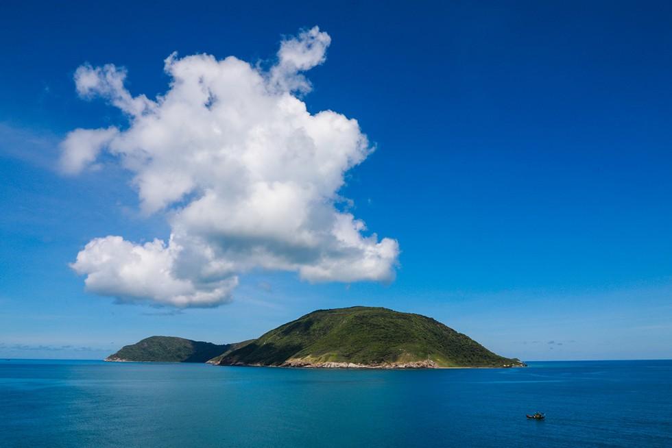'Choáng' với cột san hô khổng lồ khi lặn biển ở Côn Đảo - ảnh 2
