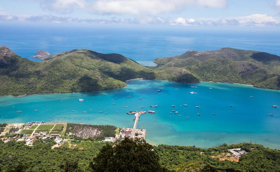 'Choáng' với cột san hô khổng lồ khi lặn biển ở Côn Đảo - ảnh 1